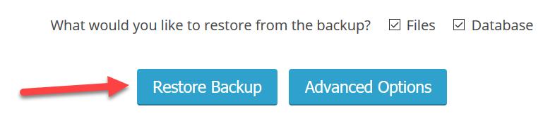 restore backup button
