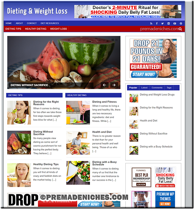 Diet and Weight Loss Ready Made Blog with PLR License
