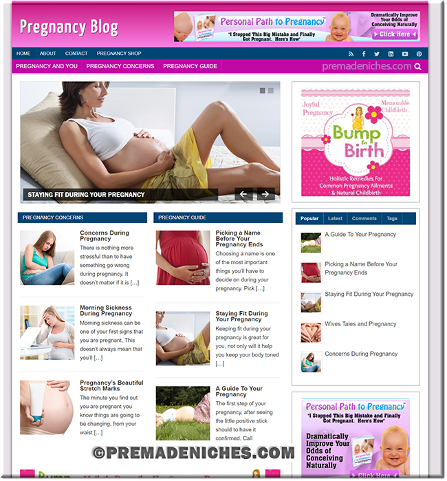 Pre Made Pregnancy WordPress Blog with License to Resell