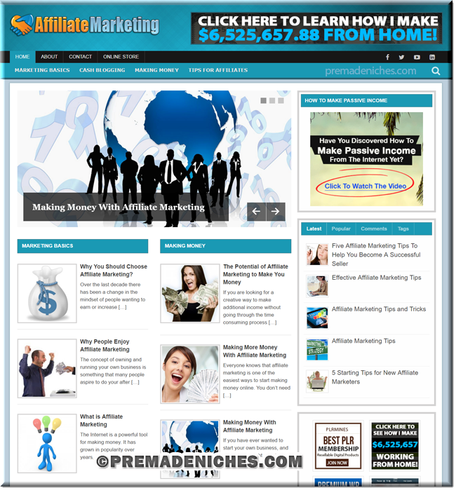 affiliate marketing niche plr website