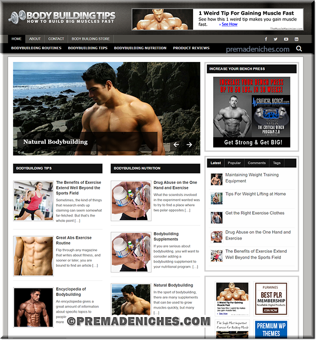 body building plr blog
