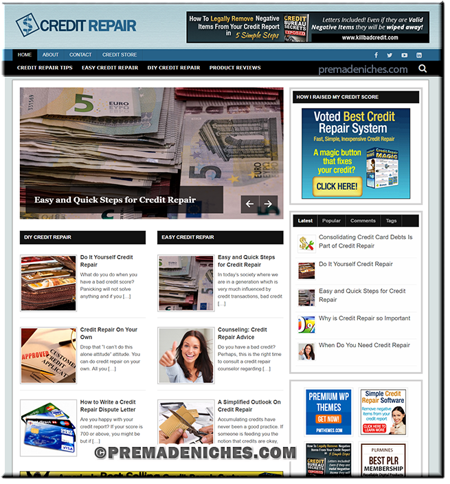 credit repair premade blog package