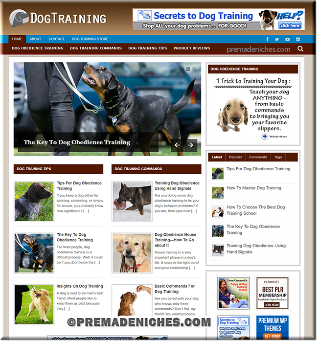 dog training premade plr niche blog