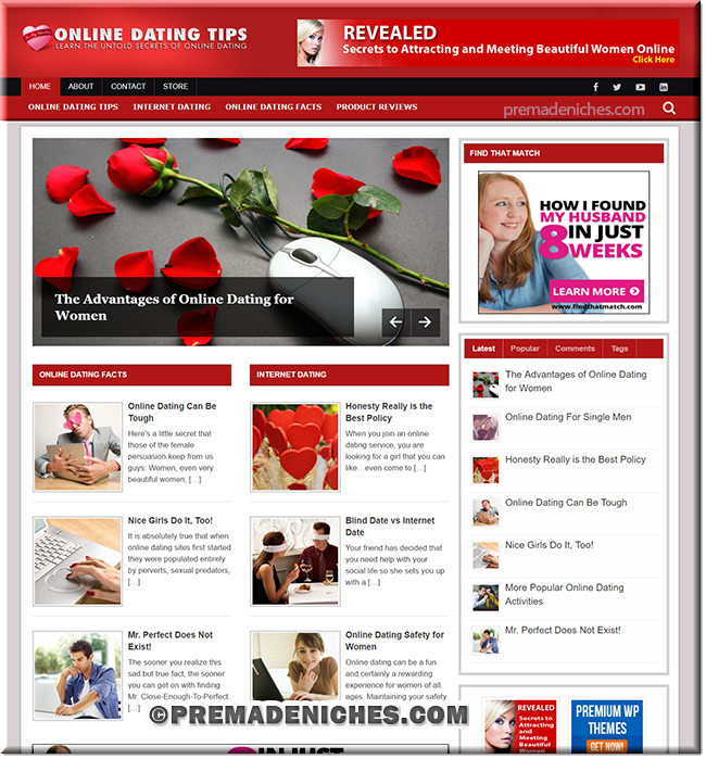 online dating premade niche blog