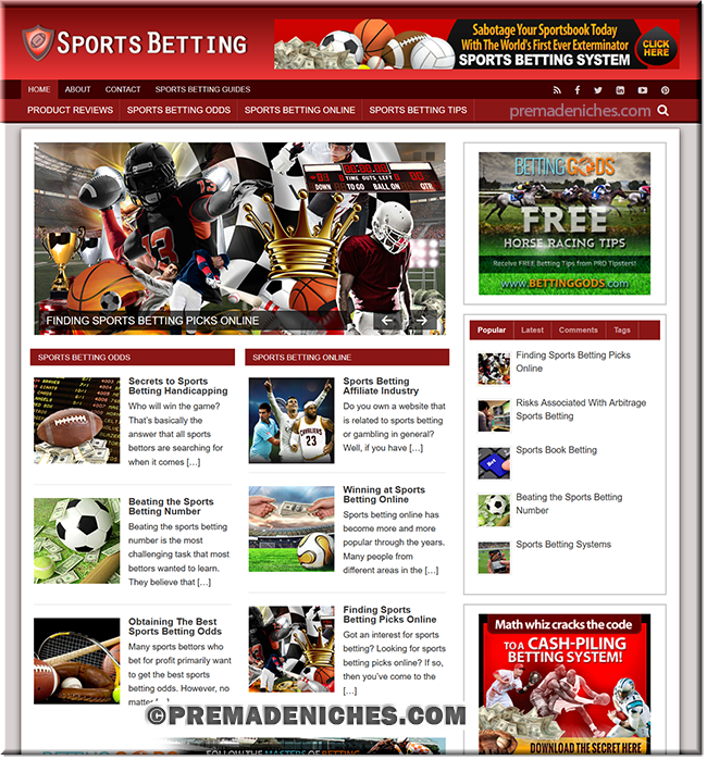 sports betting plr niche site