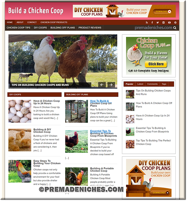 chicken coop blog