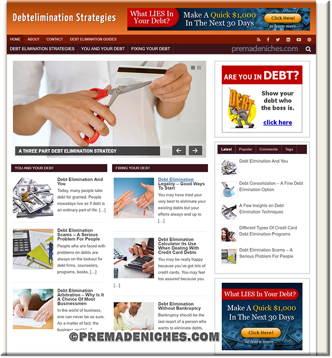 Debt Elimination PLR Site