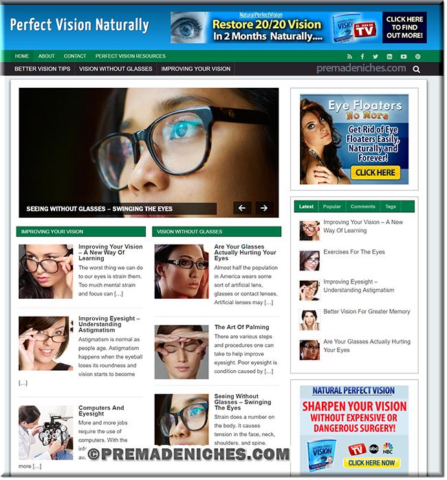 perfect vision wordpress blog