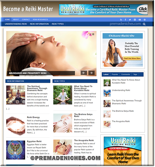 reiki master wordpress plr blog
