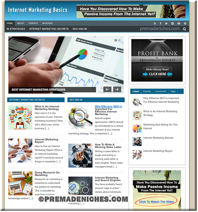 Internet Marketing PLR Style Starter Website