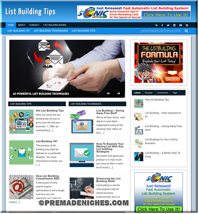 List Building WordPress PLR Niche Blog