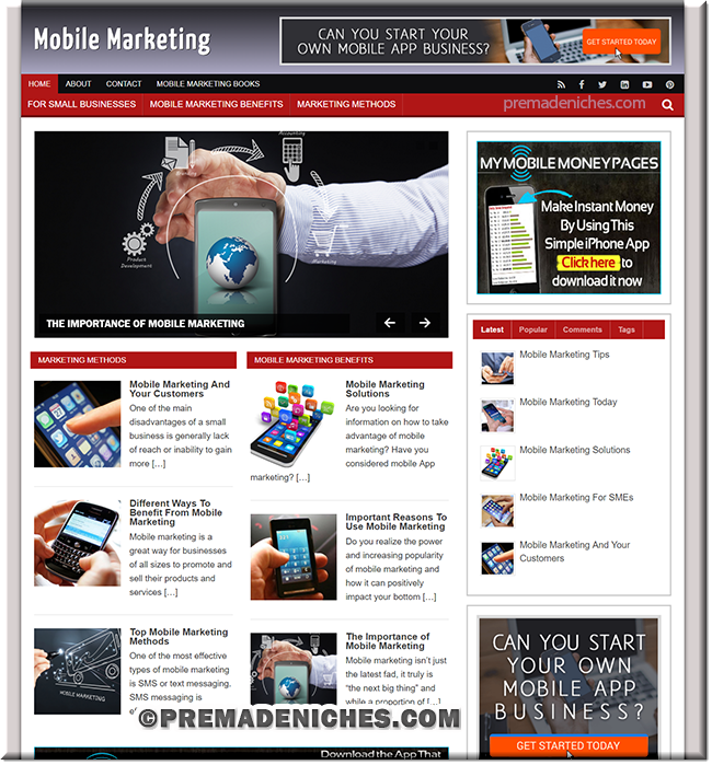 Mobile Marketing Turnkey PLR Website