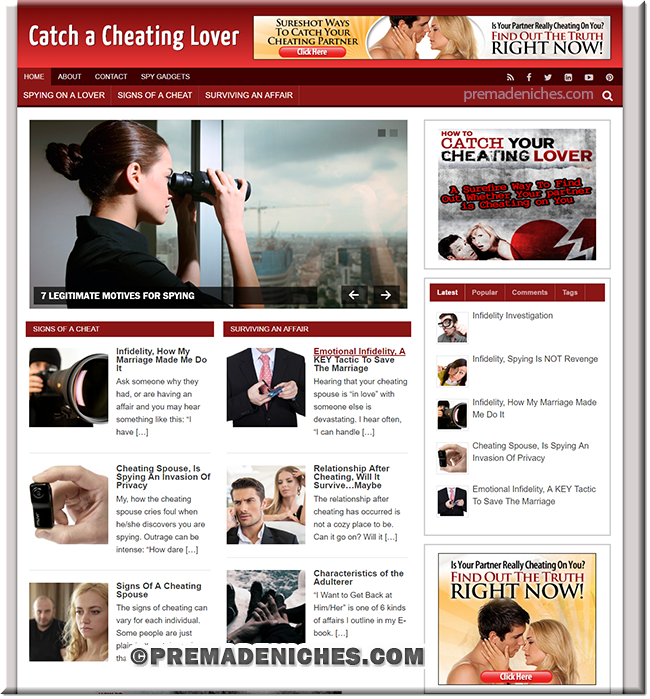 catch cheat plr blog