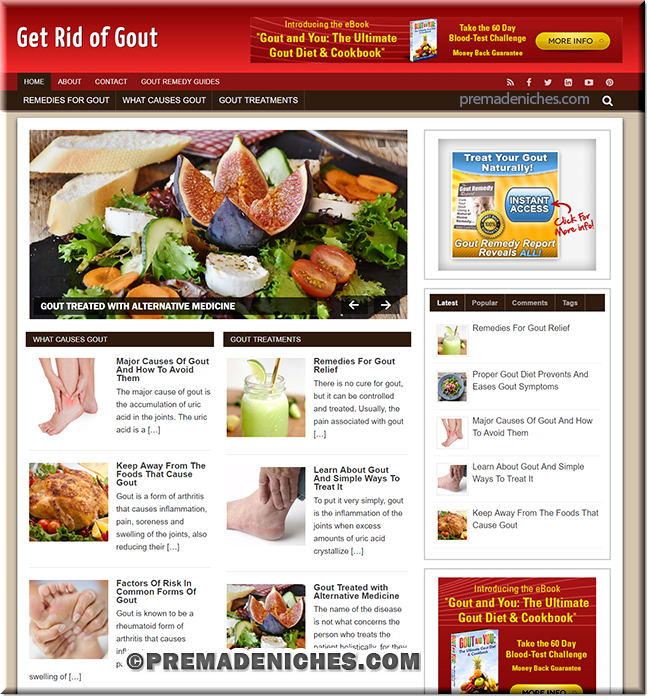 gout remedy plr blog
