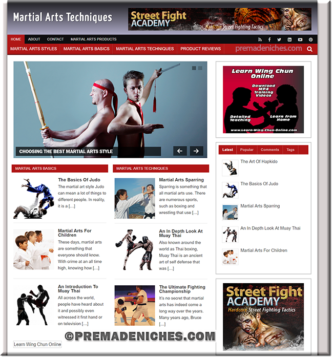 martial arts niche blog