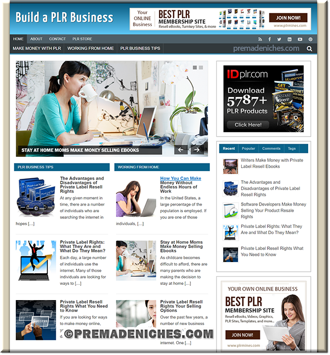 plr business pre made niche blog