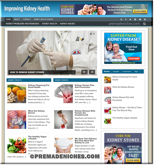 kidney health custom wordpress site