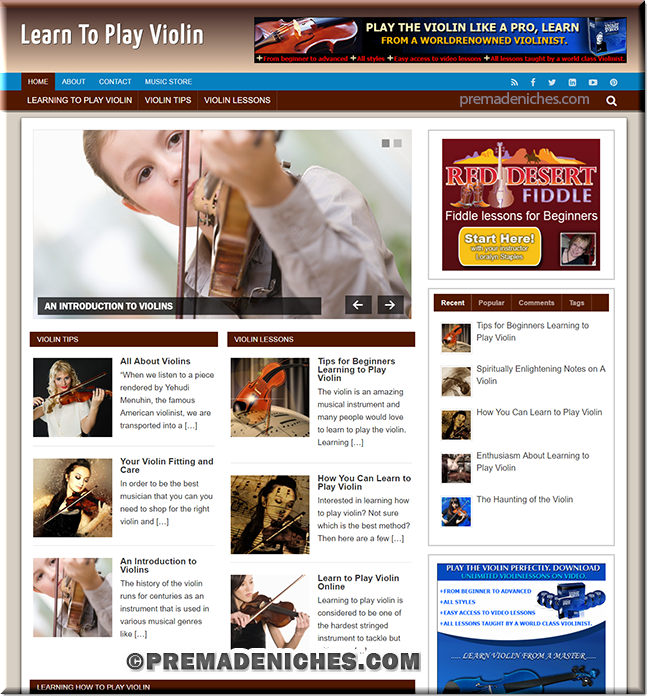 learn violin plr affiliate blog