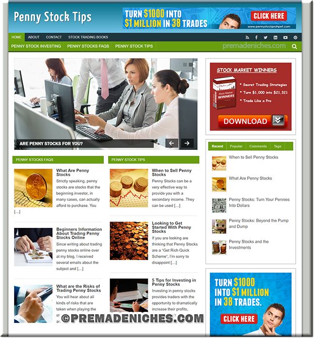 penny stocks pre made niche website