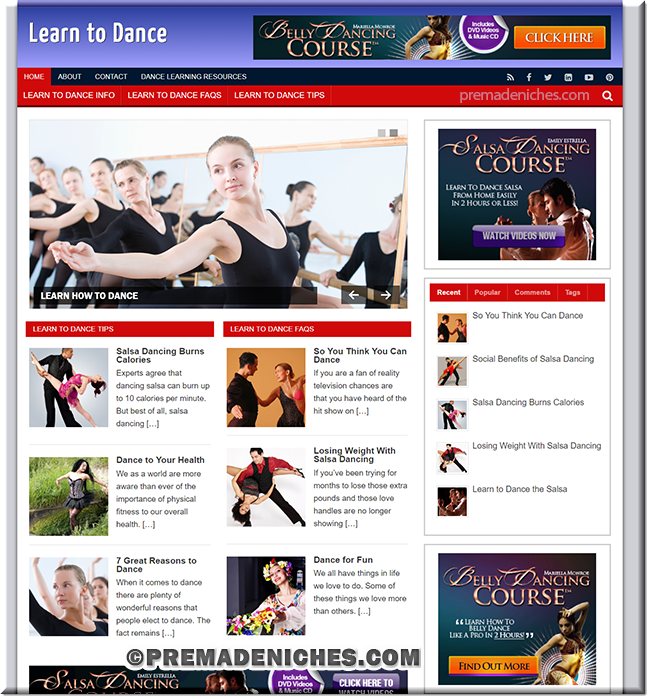 learn to dance plr website
