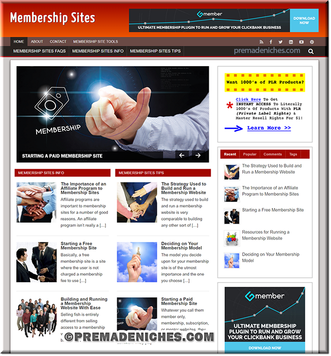 memberships wordpress plr site