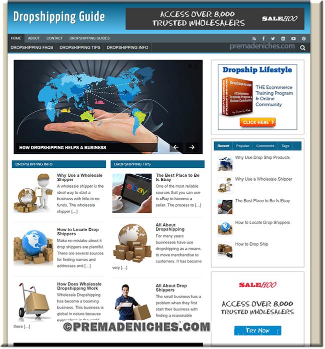 dropshipping plr niche blog