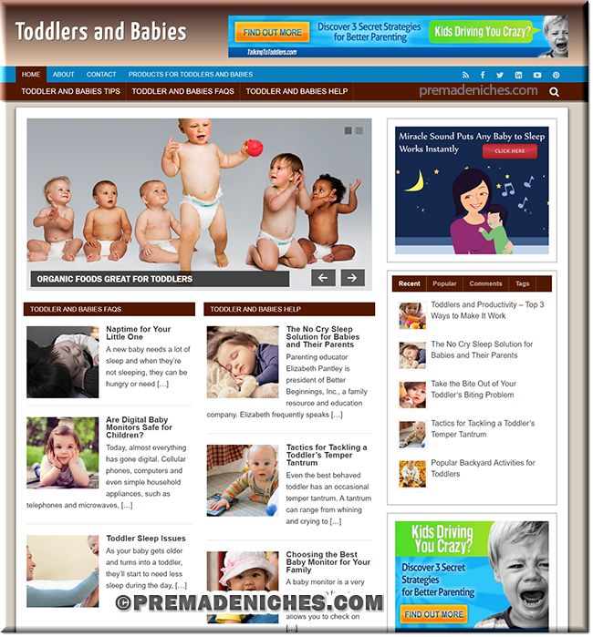 toddlers and babies plr blog