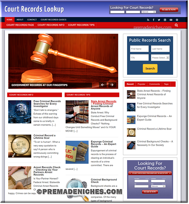 court records lookup niche site