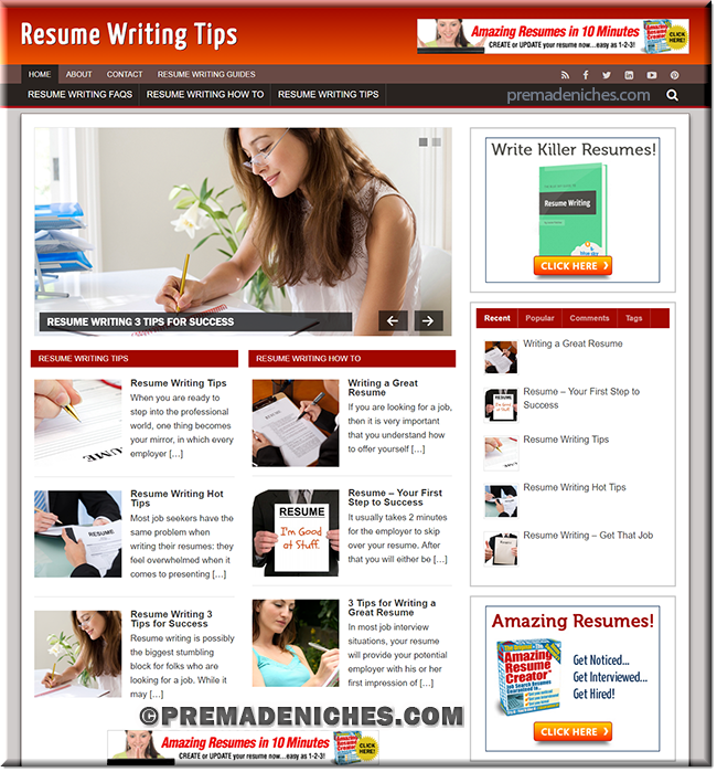 resume writing niche website