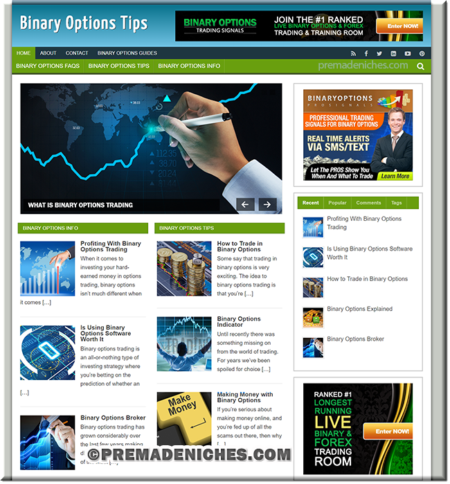 binary options plr website