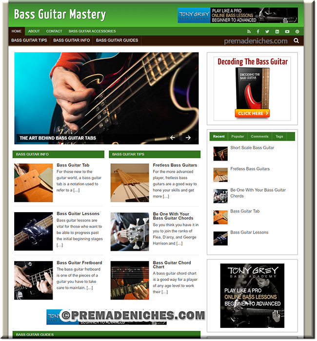 Bass Guitar PLR Niche Website with Resell Rights