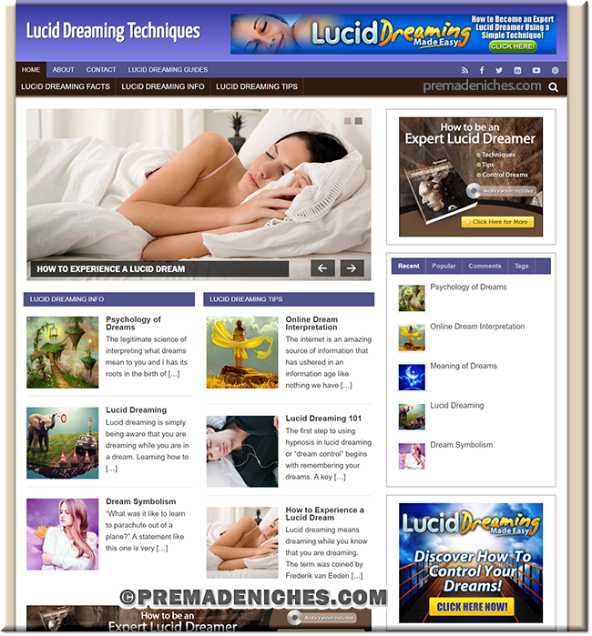 lucid dreaming plr niche blog