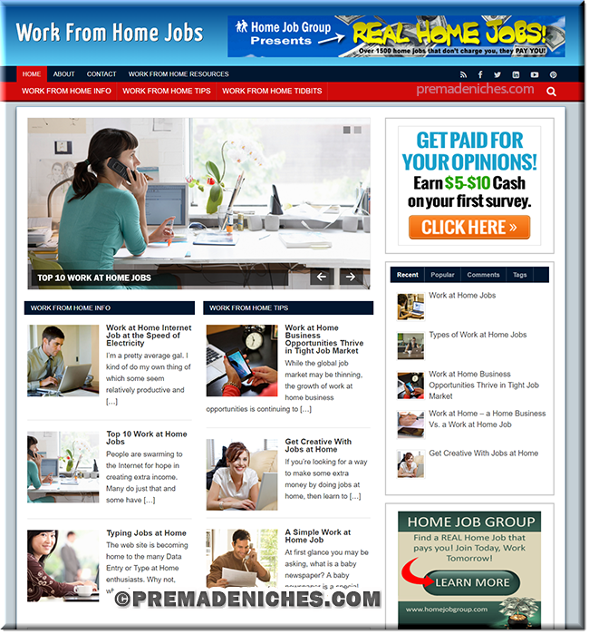 work from home jobs plr blog