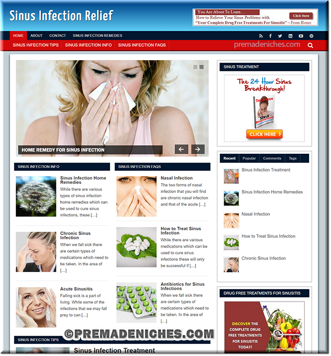 Sinus Infection - Ready Made Blog for Beginners