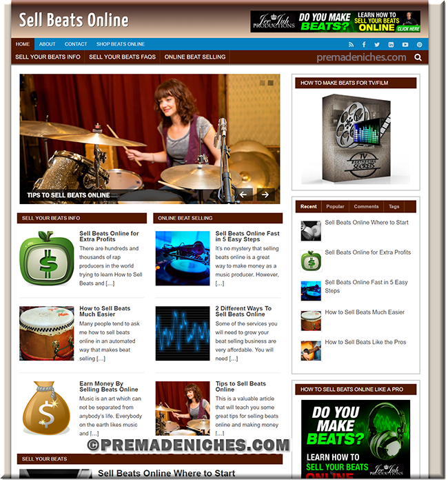 Sells Beats Online PLR Niche Blog