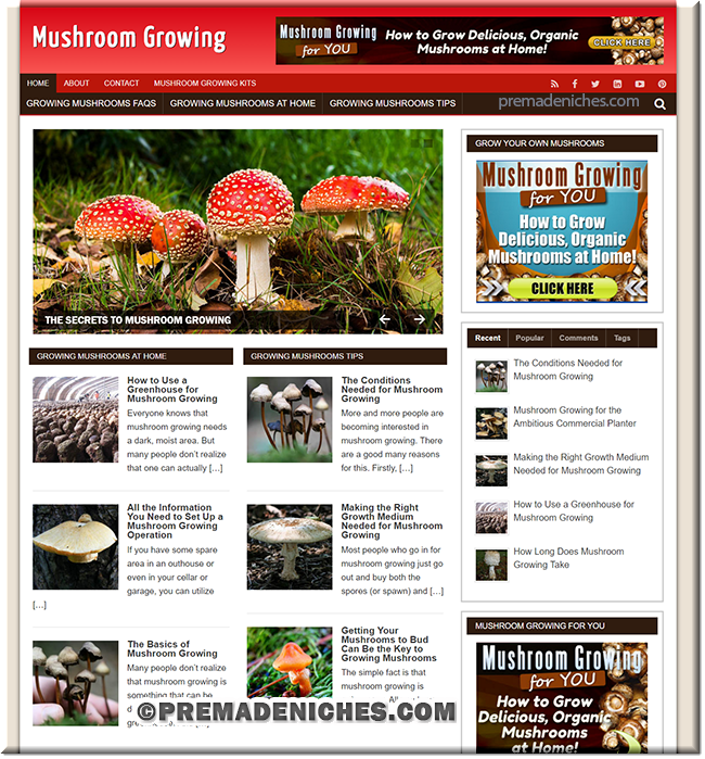 Grow Mushrooms PLR Blog
