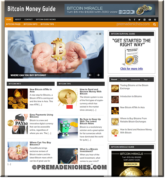 Bitcoin PLR Website