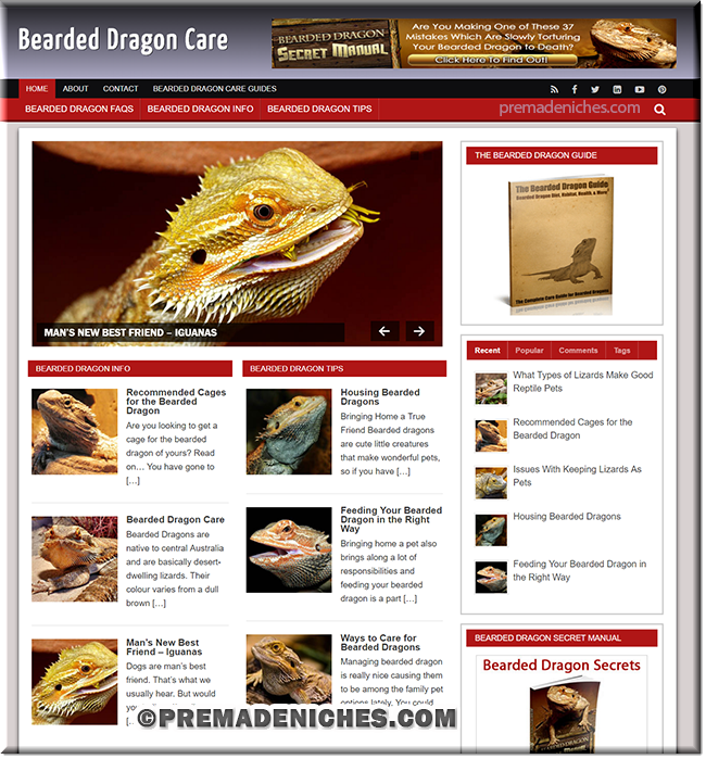 Bearded Dragons PLR Blog