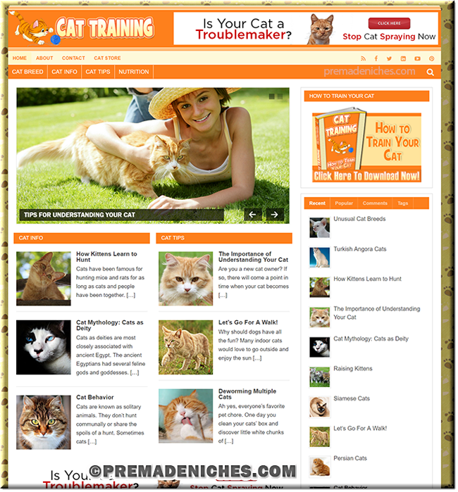 Cat Training PLR Niche Blog