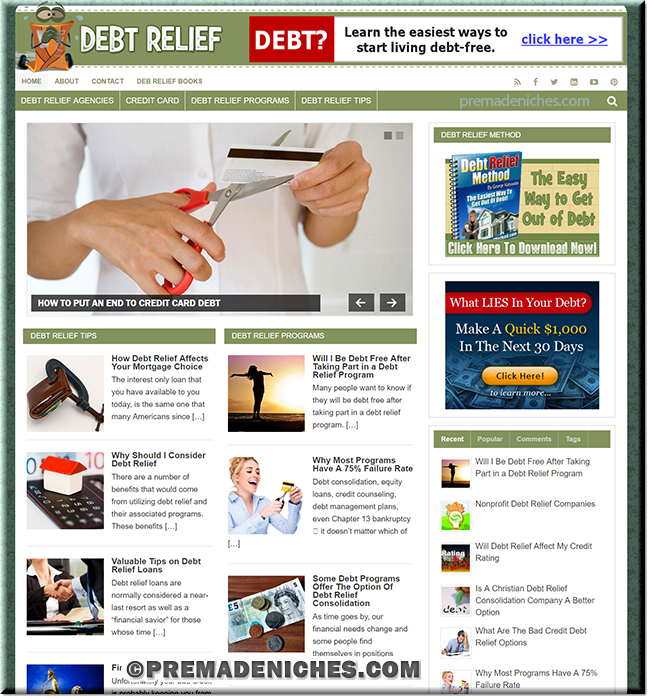 Debt Relief PLR Blog