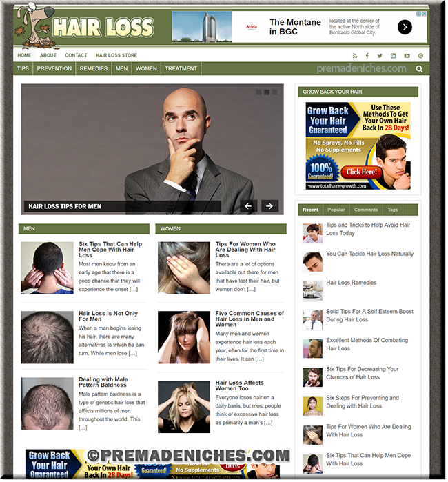 Hairloss PLR Niche Blog
