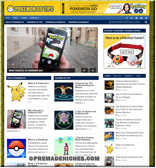 Pokemon Go Niche PLR Blog