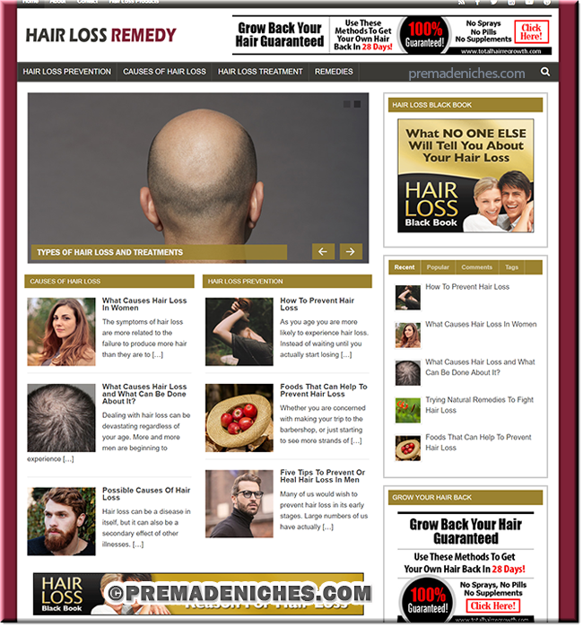 Hair Loss Remedy Turnkey PLR Blog