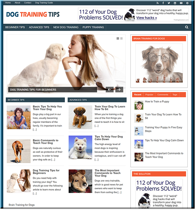 Dog Training Tips - Done-for-you PLR Blog