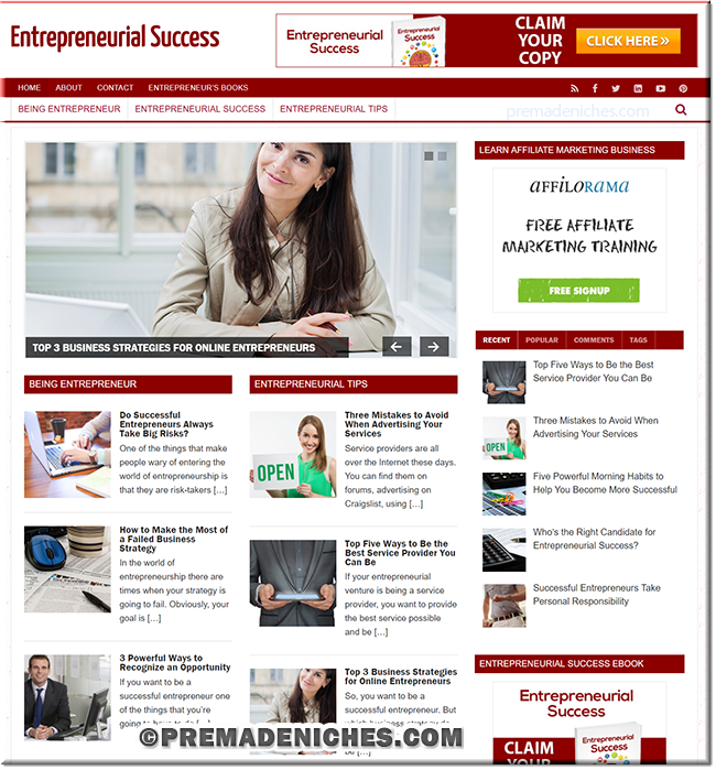 Entrepreneurial Success PLR Blog