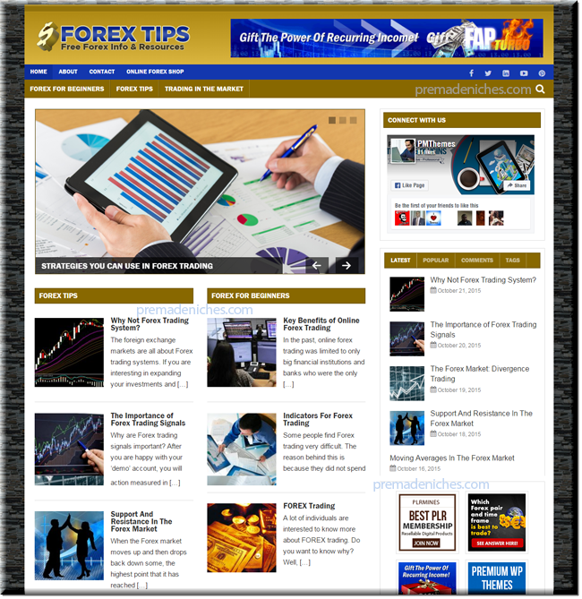 Forex Niche PLR Blog Package
