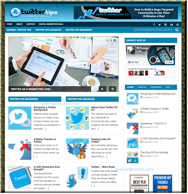 twitter marketing niche website