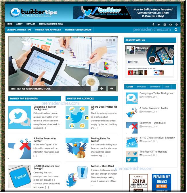 twitter marketing niche website