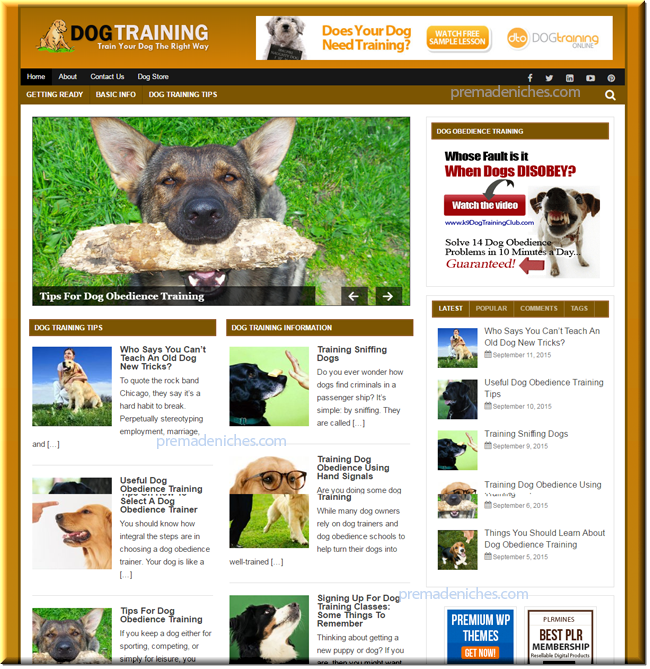 dog training ready made niche blog