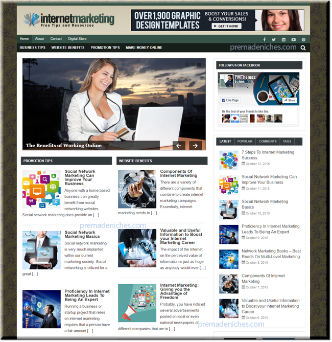 internet marketing plr niche site